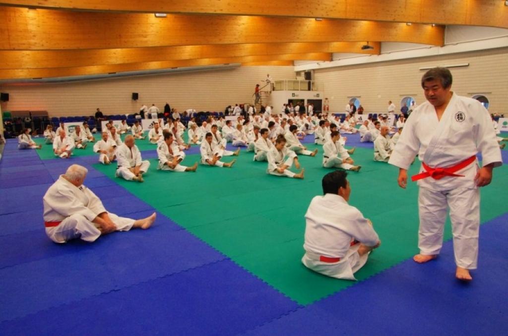 Kodokan Seminar 2013 hosted in Rome