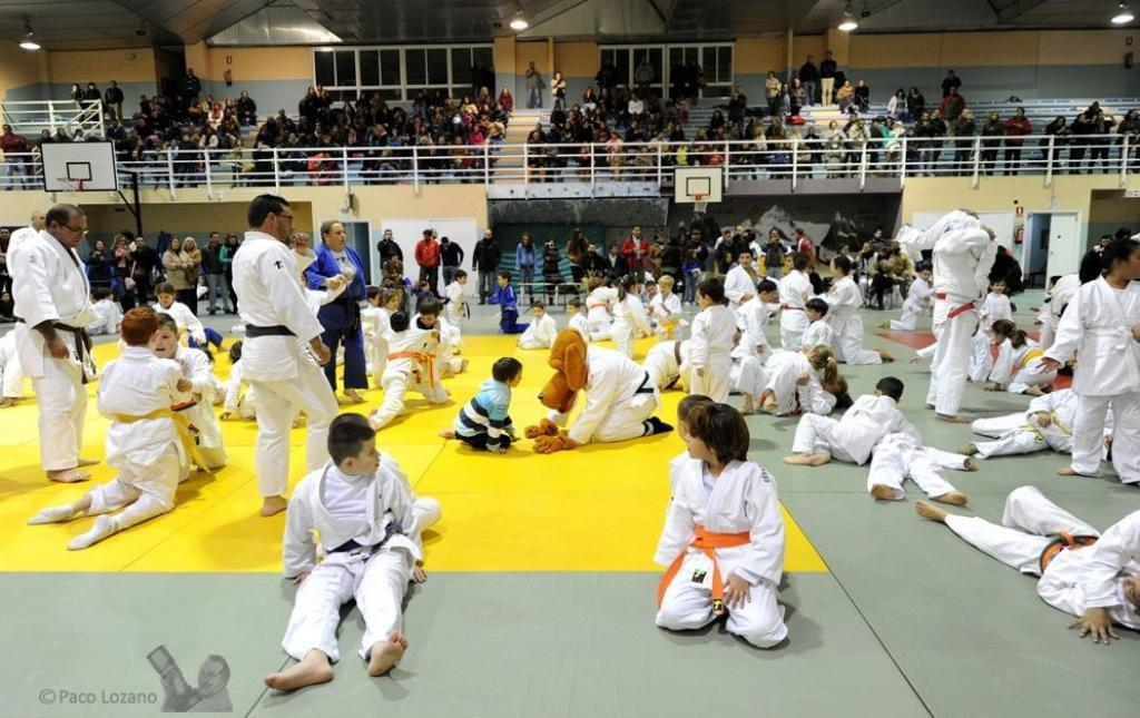 Judo at School Seminar in Madrid